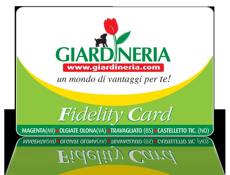 fidelity750
