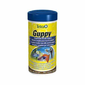 Mangime completo per tutti i Guppy.