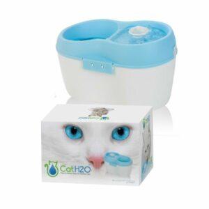 Tutti i gatti preferiscono l'acqua corrente