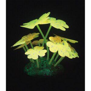 Aqua lumo quadrifogli gialli stellati cm 7x7x9